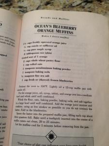 Blueberry Muffin Recipe (480x640)