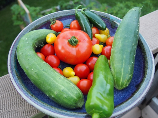This morning's garden harvest
